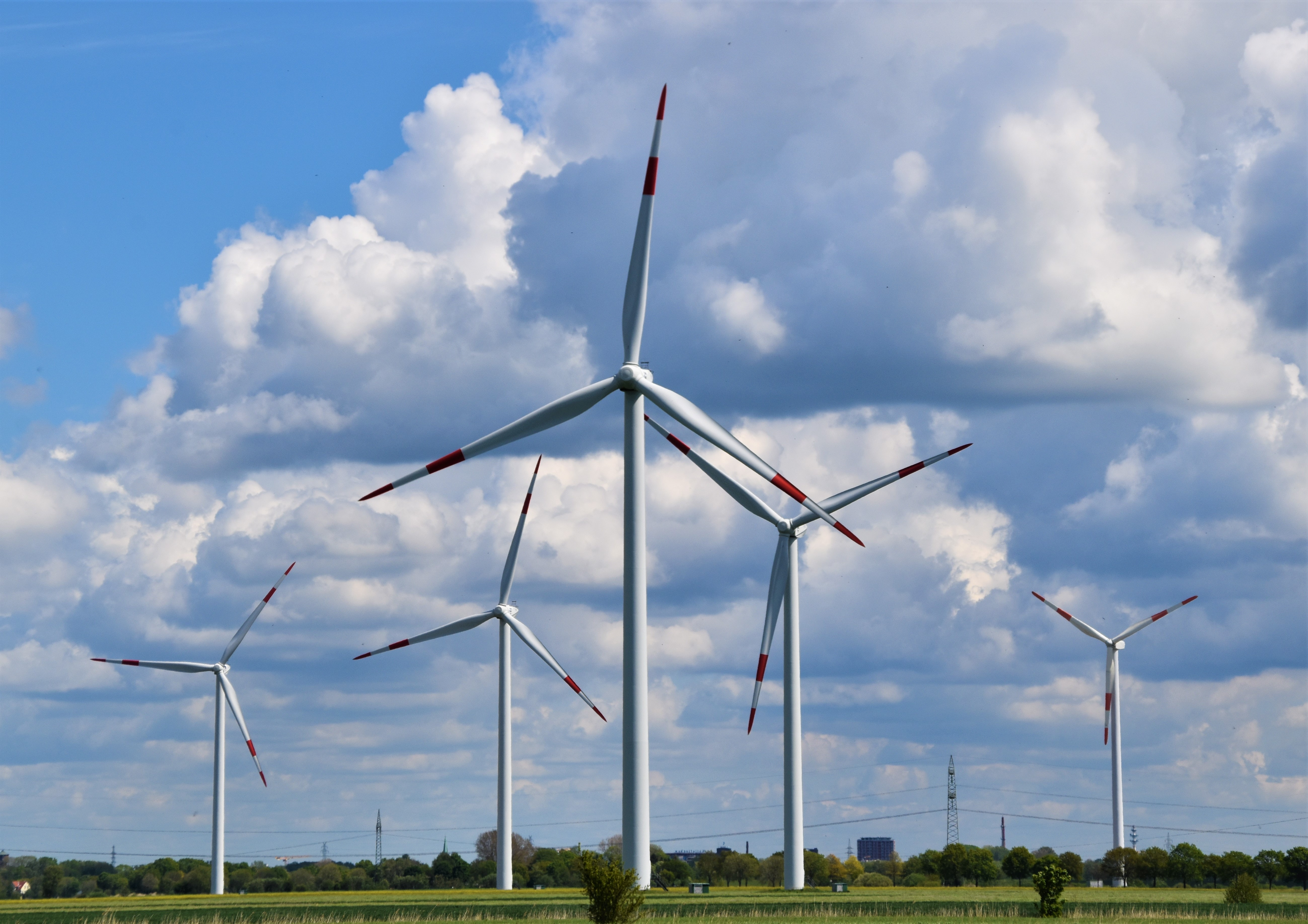 Green Tax Incentives: Eco-friendly Solutions That Could Save Your Business Money